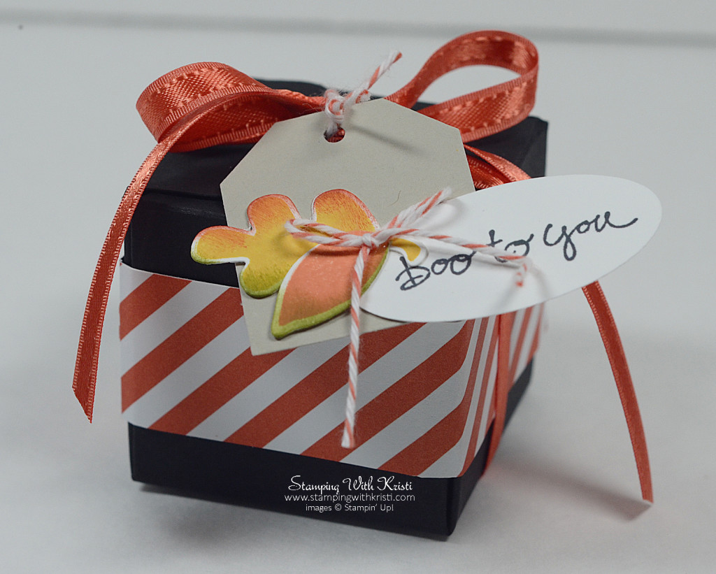 Stampin Up Gift Box Punch Board Fall Fest box by Kristi @ www.stampingwithkristi.com