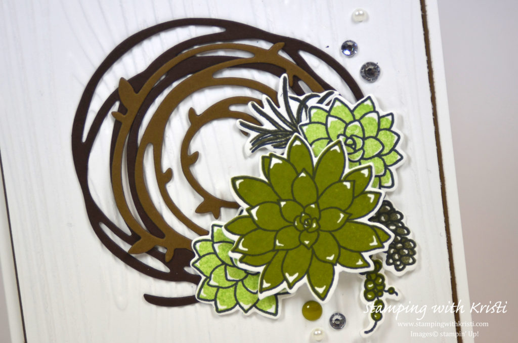 Stampin Up Oh So Succulent and Swirly Bird card by Kristi @ www.stampingwithkristi.com